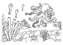 Ausmalbilder Fur Kinder Mit Unterwasser Szenen
