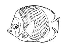 Ausmalbilder Fische Krebse Seepferdchen Kraken Quallen ...