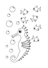 Ausmalbilder Fische Krebse Seepferdchen Kraken Quallen Muscheln