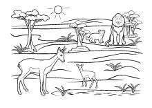 Malvorlagen Wildtiere Elefant Löwe Tiger Reh Lustige